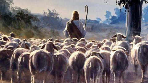 Chiên mập và mạnh