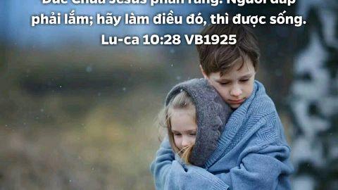 Hãy làm sự thương xót